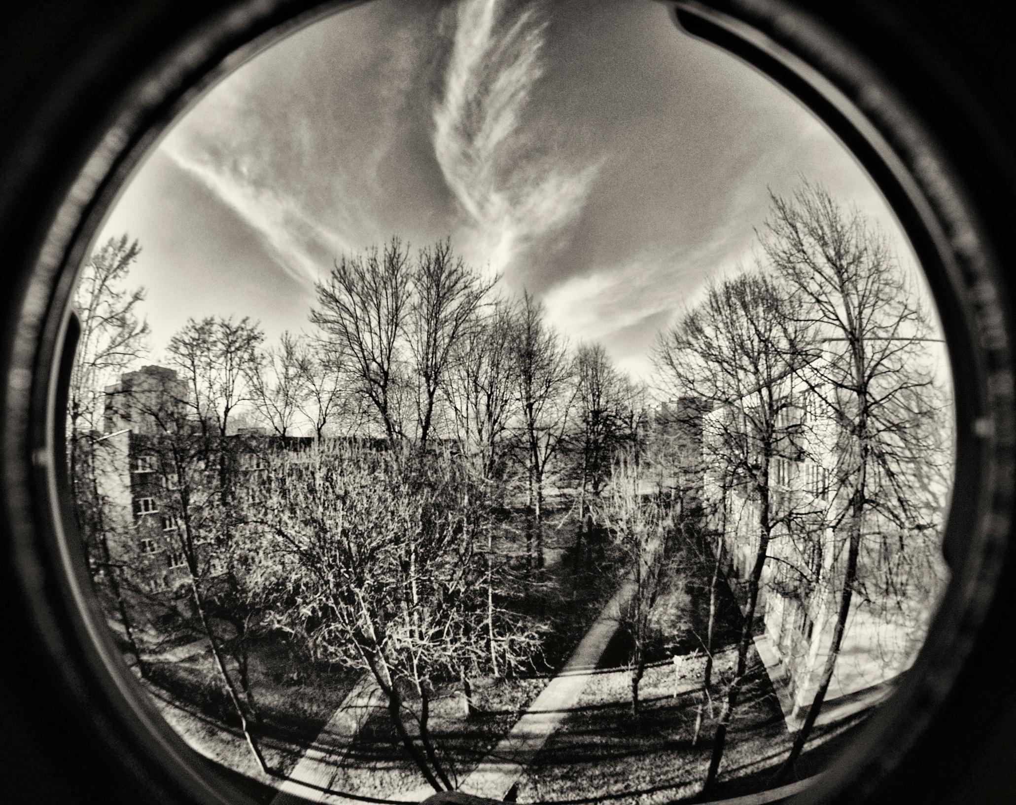 Czarno-biała fotografia zpejzażen widzianym wzaokrągleniu soczewki.
