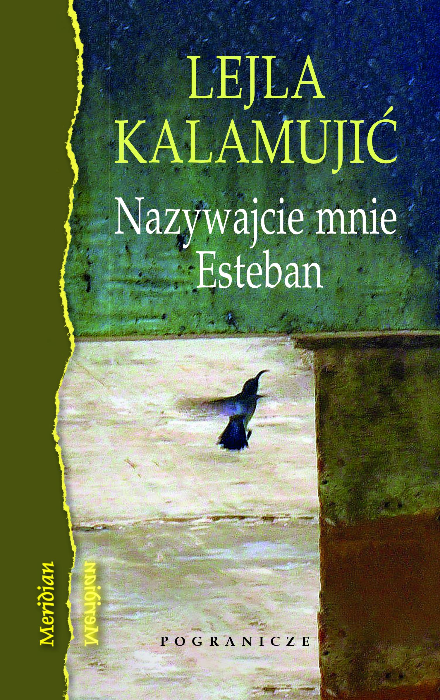 Kolorowa okładka książki. Ptak wlocie natle zieleni.
